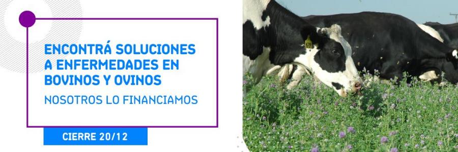 Llamado de Fondo Sectorial de Salud Animal - Investigación