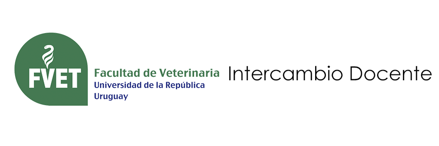 Intercambio Docente