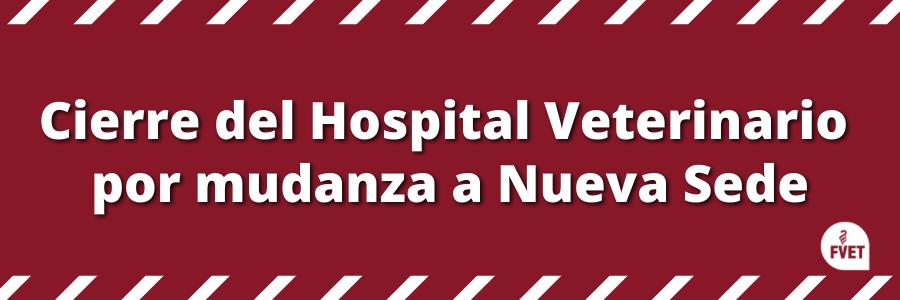 Aviso: sobre atención en el Hospital Veterinario