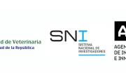 Charla sobre el Sistema Nacional de Investigadores (SNI – ANII)