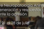 Curso sobre Neuropatología Animal: neurodegeneración y respuestas del sistema nervioso ante la agresión