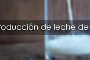 """Curso: """"Producción de leche de calidad"""""""