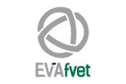 Consultas sobre EVA en FVET