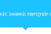 "Charla: ""Leishmaniosis: zoonosis emergente en Uruguay"""