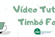 Video tutorial sobre búsqueda de información Timbó Foco