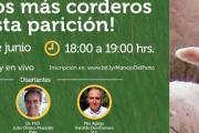 """Jornada Virtual - """"Salvemos más corderos en esta parición"""""""