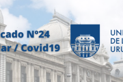 Comunicado Nº24 de la Udelar / Covid-19