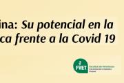 """Webinar: """"La Ivermectina y su potencial terapéutico contra la Covid-19"""""""