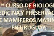 Primer Curso de Biología, Medicina y Preservación de mamíferos marinos en Uruguay