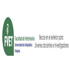 Fvet for Convocatoria docentes exterior